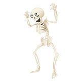 scheletro Immagine Stock Libera da Diritti