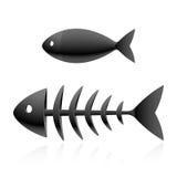 Scheletro dei pesci Immagine Stock Libera da Diritti