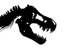 Scheletro del cranio e del collo di T-rex del rex di tirannosauro Vettore Immagini Stock Libere da Diritti