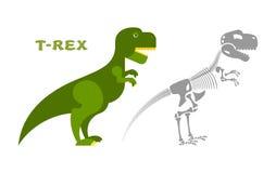 Scheletro di tirannosauro del dinosauro Ossa e t-Rex del cranio Fotografia Stock Libera da Diritti