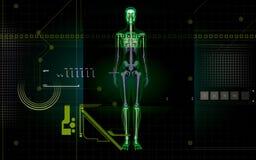 Scheletro umano illustrazione vettoriale