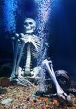 Scheletro umano sotto acqua immagine stock libera da diritti