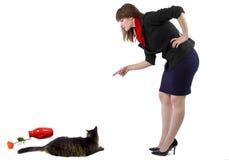 Schelten einer Katze Lizenzfreie Stockfotografie