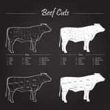 Schema dei tagli di carne del manzo Fotografia Stock