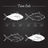 Schema dei tagli di carne del tonno Immagini Stock Libere da Diritti