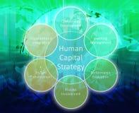 Schema di affari dei capitali umani Immagini Stock