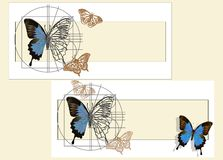 A schematic drawing of a butterfly. Royalty Free Stock Photos