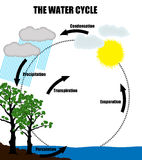 Schematic representation of the water cycle in nature Stock Images
