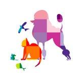 Schematical animals background Stock Photos