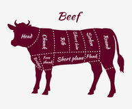 Scheme of Beef Cuts for Steak and Roast. American cuts of beef. Scheme of beef cuts for steak and roast. Butcher cuts scheme. Beef cuts diagram in vintage style Stock Photos