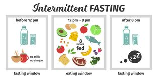 Scheme and concept of Intermittent fasting. eating and fasting windows. Vector illustration. Infographic. Scheme and concept. eating and fasting windows. Vector royalty free illustration