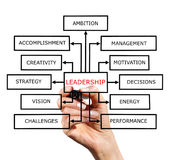 The scheme of leadership. A block diagram of a leadership drawn with marker on white background Stock Photos