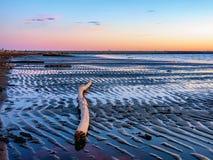 Schemer langs het strand in Iona Island dichtbij Vancouver stock foto's