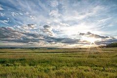 Schemer op de Prairie Royalty-vrije Stock Afbeelding