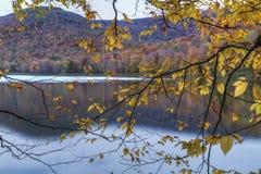 Schemering Autumn Silhouette Royalty-vrije Stock Foto's