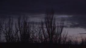 Schemering en vliegende wolken achter silhouetten van bomen stock footage