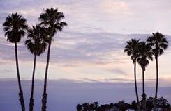 Schemeringhemel in Santa Cruz Beach Stock Afbeeldingen