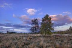 Schemeringscène op een hitteland in de Herfst, Nederland stock afbeeldingen