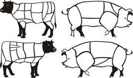 Schemi del manzo & del porco Illustrazione di Stock