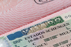 Schengen visa. Shot of few passport with Schengen visa Stock Image