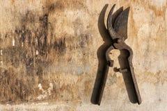 Scheranlagen rostig über altem Holztisch stockbild