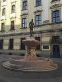 Schermer-fontein bij Universiteit in Wroclaw, Polen stock afbeelding