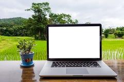 Schermo in bianco del computer portatile con il vaso della pianta fotografia stock