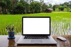 Schermo in bianco del computer portatile con il vaso della pianta sulla tavola di legno immagini stock