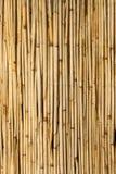 Schermo di bambù Immagine Stock