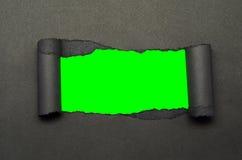 Schermo di carta e verde violento Fotografie Stock