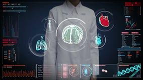 Schermo digitale commovente di medico femminile, cervello d'esplorazione, cuore, polmoni, organi interni nel cruscotto del visual