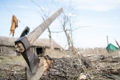 Scherp hout in een vissers` s tuin Royalty-vrije Stock Foto's