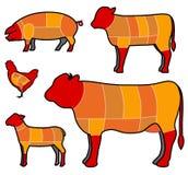 Scherp vlees stock illustratie