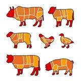 Scherp vlees royalty-vrije illustratie