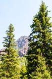 Scherpe die de bergpiek van Montana door weelderige bomen wordt ontworpen Stock Foto's