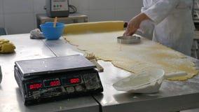 Scherpe het deegcirkels van de bakkerijarbeider in industriële bakkerij stock videobeelden
