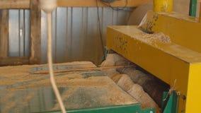 Scherpe houten raad stock video
