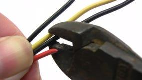 Scherpe Kabels stock video
