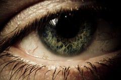 Scherpe macro van een oog stock fotografie
