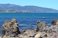 Scherpe rotsen op de rand van Lyall-Baai in Wellington, Nieuw Zeeland stock foto