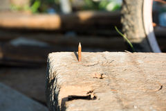 Scherpe spijker in oud hout Stock Foto's