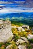 Scherpe stenen onder het bergweiden verticale landschap Stock Fotografie