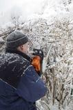 Scherpe Struiken in de Winter stock afbeeldingen