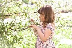 Scherzen Sie Mädchen nahe Baum mit Frühlingsblumen, Sonnenschein Lizenzfreie Stockbilder