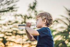 Scherzen Sie trinkendes reines Süßwasser in der Natur bei Sonnenuntergang Lizenzfreies Stockfoto