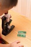 Scherzi facendo uso di un microscopio per ricercare la natura con i parecchi sampl Immagini Stock