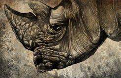 Schets die met digitale tablet van rinoceroshoofd wordt gemaakt Stock Foto
