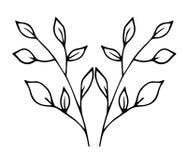 Schets - dunne takken met bladeren Royalty-vrije Stock Foto's