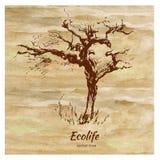 Schets grafische boom op waterverf kleurrijke achtergrond, vectorhand getrokken illustratie, uitstekende stijl, malplaatje voor stock illustratie