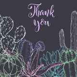 Schets lineaire cactus ANS succulents stock illustratie